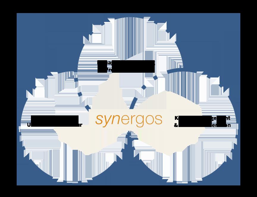 synergos Kompetenzfelder